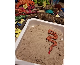 Sandtier Schlange mini Z