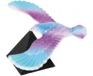 Balans vingervogel groot