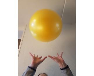 Gymnic Soffy Ball 45 cm