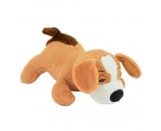 Touchimal hond Henry